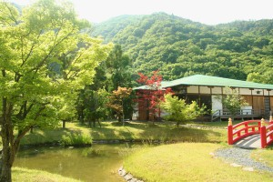 前庭の風景